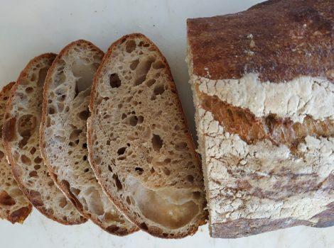 לחם חיטה ואיינקורן