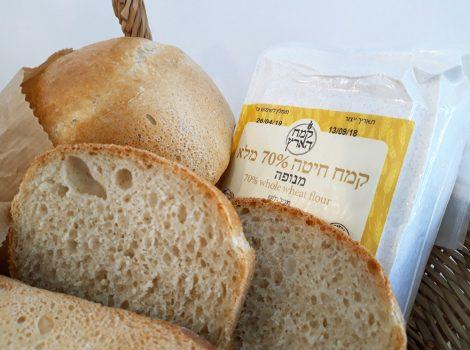 לחם כפרי בסיסי 1