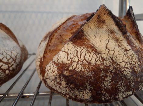 לחם מחמצת מלא טחינה גסה